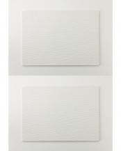 ホワイト●耐熱平皿 長角L 2Pセット○FPX90-315
