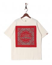 WHITE●半袖Tシャツ○VA17HS-MT01