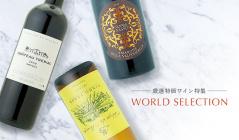 厳選特価ワイン特集 -world selection-(スペシャルプライズワイン)のセールをチェック