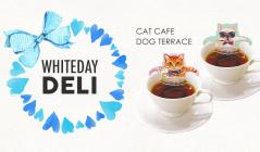 CAT CAFE/DOG TERRACEのセールをチェック