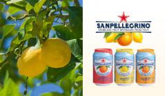 スパークリング フルーツベバレッジ -SANPELLEGRINO-(サンペレグリノ)のセールをチェック