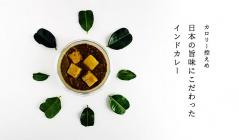 食欲の秋に カロリー控えめ インドカレー(メイフェアキッチン)のセールをチェック