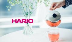 HARIO(ハリオ)のセールをチェック