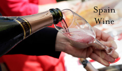 Spain Wine -情熱の国が産み出すバラエティ豊かなワイン-のセールをチェック