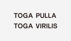 TOGA ARCHIVES -TOGA PULLA/TOGA VIRILIS-(トーガ)のセールをチェック