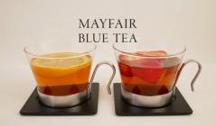 甘美で上品な香りの台湾烏龍茶 メイフェアブルーティー(メイフェアキッチン)のセールをチェック