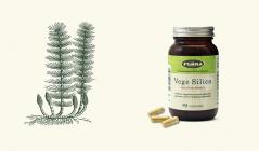 スギナから「水で抽出」の植物性シリカ!有機態ミネラルのベジ・シリカ(フローラ)のセールをチェック