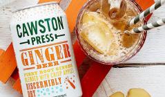 CAWSTON -アルコールフリーを楽しむドリンク「モクテル」のセールをチェック