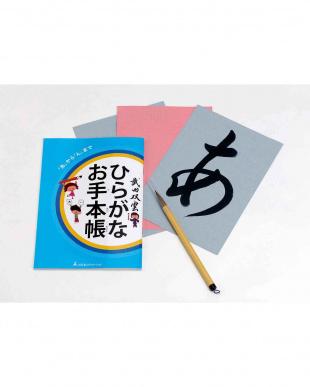武田双雲 水で書けるはじめてのお習字を見る