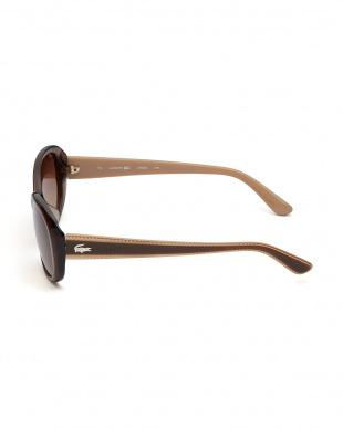ブラウン デザインテンプルサングラスを見る