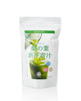 熊本県産 乳酸菌入り 桑の葉新芽青汁 3袋セット見る