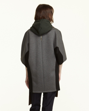 00V92 ブラウン×グレー HOODED STOLEを見る