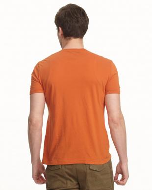 オレンジ 天竺 オーバーダイを見る