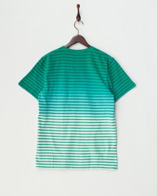 GREEN ボーダーグラデーションVネックTシャツを見る
