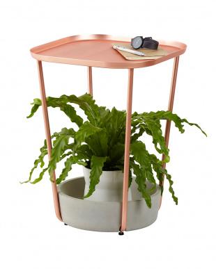 コンクリート×コパー タバロ サイドテーブルを見る