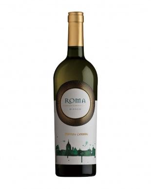 ローマ・ビアンコ 白ワインを見る