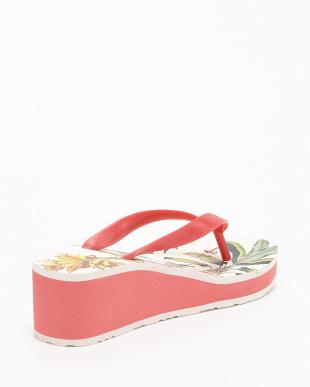 ピンク Lola Colibri サンダルを見る