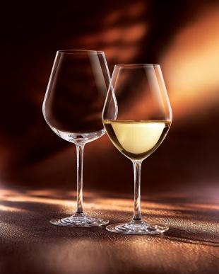 アロマップ フルーティー 350(白ワイン用) 6客セットを見る