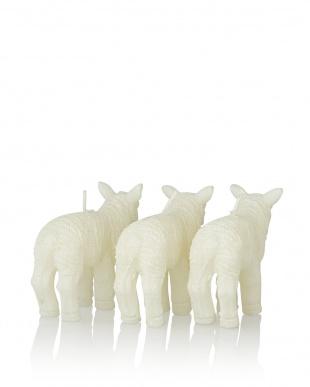 SHEEP キャンドル カーム S/3見る