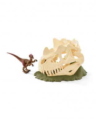 巨大恐竜の骸骨トラップ見る