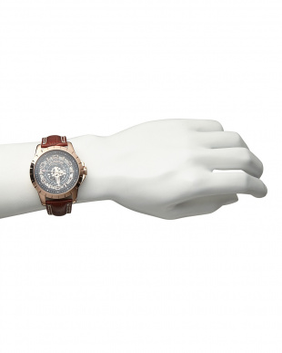 ピンクゴールド 機械式腕時計 038|MEN見る