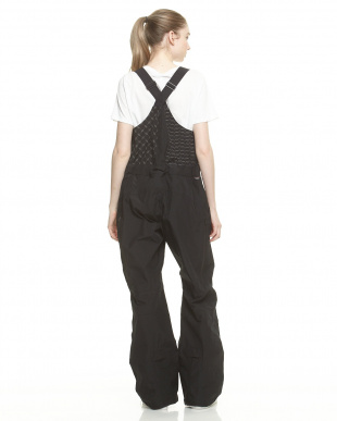 True Black Black Scale x Burton Defender Bib Pant見る