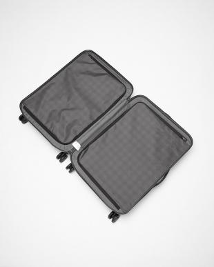MATT GRAPHITE TILEUM SPINNER 69cm スーツケース│UNISEX見る