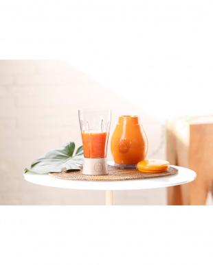 マンゴーオレンジ OLALAコンパクトブレンダ―を見る