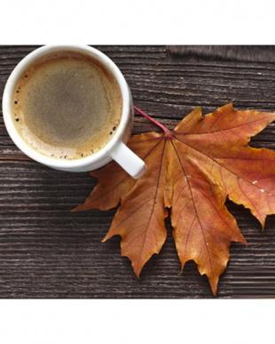 Maple Terroir メープルコーヒー見る