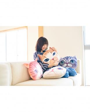アメリカンショートヘアー モチーフクッション Koira&Kissa(コイラキッサ)を見る