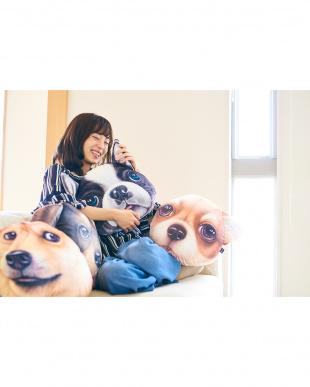 柴 モチーフクッション Koira&Kissa(コイラキッサ)を見る