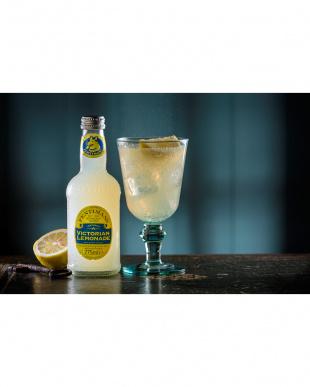 天然ジンジャー入り レモン果汁14%配合 大人のビクトリアンレモネード12本セット見る