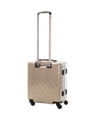 ゴールド ナロースクエア S 40L スーツケース見る