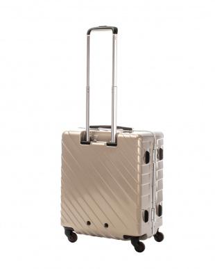 ゴールド ナロースクエア M 55L スーツケース見る
