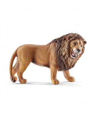 ライオンセットを見る