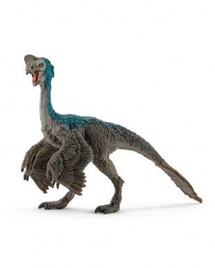 人気恐竜セット3見る