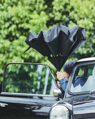 ブラック 2重傘 circus(サーカス) 晴雨兼用を見る