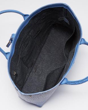 564 Blue Mist 858 Roseau style Croco見る