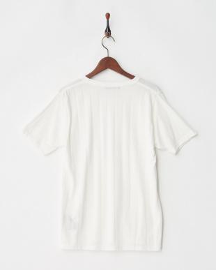 ホワイト シルケットストライプTシャツ S/S見る