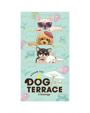 DOG TERRACE ドッグテラス(アッサム) 4個セットを見る