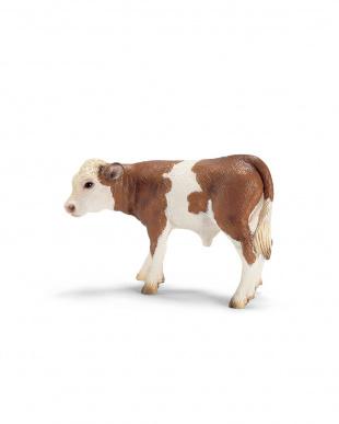 シュライヒ 牛セット見る