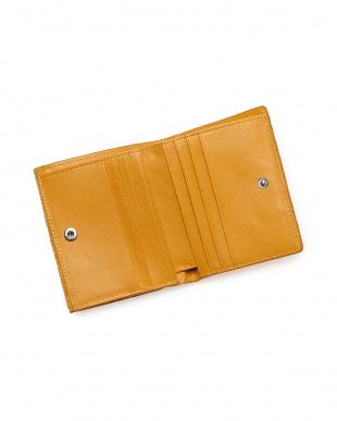 サンサン  クロコダイルコンパクト財布見る