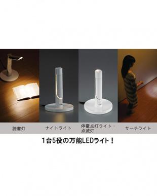 ホワイト LEDふとんライトを見る