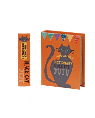 BLACK CAT ブックボックス 2個セットを見る