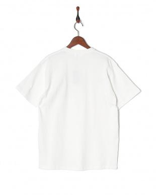 ホワイト  CYA/TS KNOW NOTHING190g/㎡ 天竺 シーヤTシャツを見る