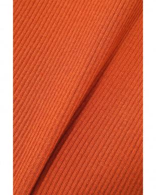 オレンジ1 ハーフスリーブリブニット R/B(オリジナル)を見る