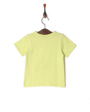 グリーン Tシャツを見る