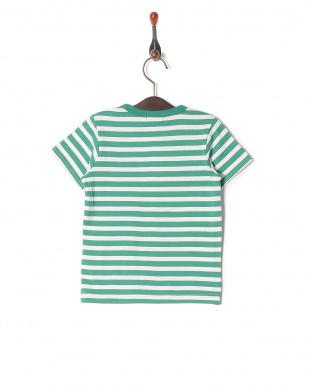 グリーン系 Tシャツを見る