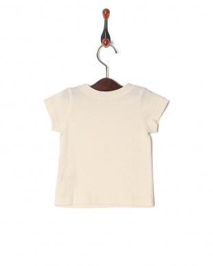 ホワイト 25/-フロストモクテンジク ベビーS/S Tシャツを見る