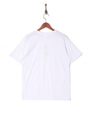 ホワイト カジュアルTシャツ クルーネックを見る